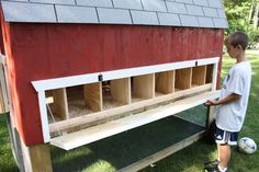 chicken coop for 12 chickens - Google Search