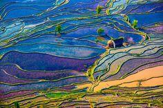 19 Photos Of Rice Terraces Guaranteed To Take Your Breath Away - Yuanyang County, Yunnan, China