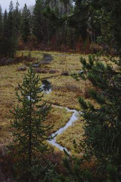"""karl-shakur: """"Yellowstone National Park ▪️ Karl-Shakur ▪️ Instagram """""""