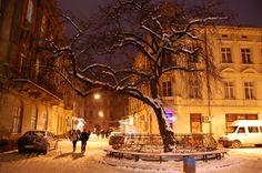 Львів за декілька годин до Нового року, 2010 рік, вулиця Крива Липа #lviv #львів #львов