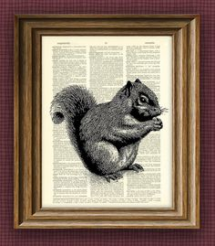 SQUIRREL beautifully upcycled vintage dictionary by collageOrama, $6.99