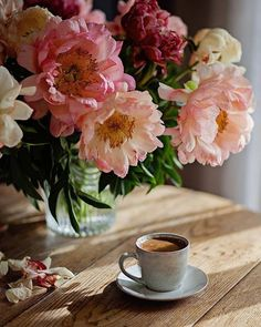 t coffee time, morning coffee, love flowers, beautiful flowers Sunday Coffee, Good Morning Coffee, Coffee Cafe, Coffee Break, Coffee Drinks, My Coffee, Cappuccino Coffee, Brown Coffee, Starbucks Coffee