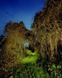 "untitled, series ""night way,"" Markus Redert, 2007"