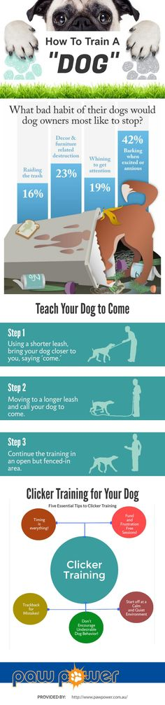 Dog training is the process of teaching a dog to exhibit certain desired behaviors in specific circumstances & also teach them unique & latest tricks. This infographic shows that it's because a trained dog requires fewer restrictions. Facts and figures about the dog training habits of owners around the world - there's an infographic and detailed post with analysis of the findings.