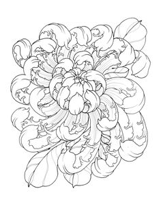 Garden Variety Flowers is part of Geometric tattoos Wrist Tatuajes - 56 pages of flower illustrations by Ben Lucas All images in this book are under copyright and can not be reproduced or sold as your own ©Illustrated Monthly 2016 ©Ben Lucas 2016 Japanese Flower Tattoo, Japanese Tattoo Designs, Japanese Flowers, Flower Tattoo Designs, Flower Tattoos, Japanese Art, Tattoo Drawings, Body Art Tattoos, Sleeve Tattoos