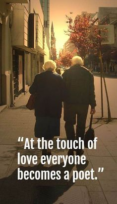 65 Cute Valentines Wallpapers Collection 337 Best Valentines Day Quotes Images Day Quotes Quote