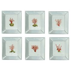 Coral Silver Mirrored Framed Wall Prints (S/6)