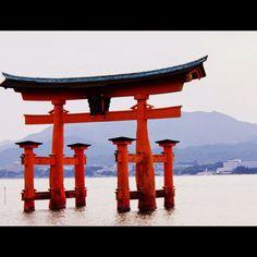 Japan 2014 https://plus.google.com/u/0/photos/104630094053650553577/albums/6030379756614832529