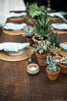 potted plants wedding table decor / http://www.himisspuff.com/potted-plants-wedding-decor-ideas/7/