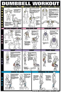 Dumbbell Workout Chart 1 - Healthy Fitness Workout Body Shoulder