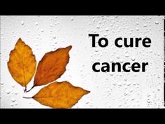 Abraham Hicks ~ To Cure Cancer - YouTube