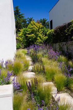 Landscape Design, Garden Design, Landscape Architecture, Prairie Garden, Small Backyard Landscaping, Backyard Patio, Garden Planning, Garden Inspiration, Land Scape
