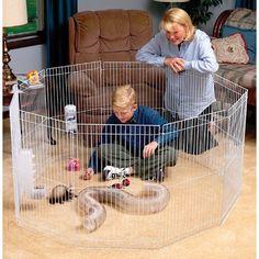 Marshall Pet Small Animal Playpen Cage Petit Animal, Small Animal Cage, Animals And Pets, Baby Animals, Cute Animals, Small Animals, Funny Animals, Charcoal Lab Puppies, Most Beautiful Dog Breeds