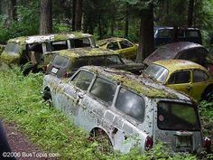Images of Classic Volkswagens hulks rotting away in junk yards, wrecking yards, salvage yards and overgrown fields. A lot of these are too rusty, but some of them could still be restored back to their Vintage VW greatness! Vw Bus, Volkswagen, Abandoned Cars, Abandoned Places, Abandoned Vehicles, Wrecking Yards, Painting Station, Car Barn, Bicycle Bell