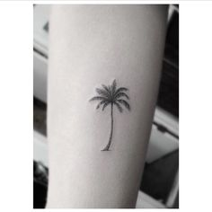 Palm Tree - http://www.lovely-tattoo.com/palm-tree/