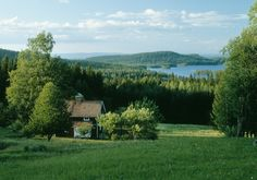 A forest homestead in Hälsingland