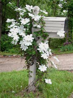 Nina i Paradiset: hageinspirasjon