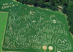 Uncle Shuck's Corn Maze in Dawsonville, Georgia is NOW OPEN for the Fall 2013 season! Uncle Shuck's Corn Maze and Pumpkin Patch is a 12-acre complex in Dawson County that offers living pathways through a forest of cornstalks.