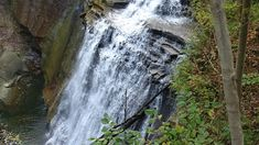 On September 2019 we traveled to the Cuyahoga Valley National Park and visited the Brandywine Falls and the outside are of the Inn at Brandywine Falls. We have heard of some reports around the falls, so we did a little investigating while were there Brandywine Falls, Summit County, Happy Trails, Haunted Places, The Other Side, Ghost Towns, Hiking Trails, Us Travel, More Photos