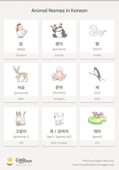 Names in Korean Chat to Learn Korean with Eggbun!Animal Names in Korean Chat to Learn Korean with Eggbun! Korean Verbs, Korean Phrases, Korean Quotes, Korean Words Learning, Korean Language Learning, Learn Chinese Language, Learning Spanish, Chinese Lessons, Korean Lessons