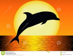 Illustration about Set of dolphin silhouettes, on white. Illustration of image, nature, element - 27134511 Dolphin Painting, Dolphin Art, Dolphin Silhouette, Silhouette Art, Rock Painting Ideas Easy, Rock Painting Designs, Sillouette Painting, Cute Easy Drawings, Beautiful Nature Wallpaper