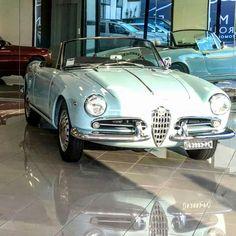 Alfa Romeo Giulietta Spider, Alfa Romeo Spider, Vintage Cars, Manual, Workshop, Bmw, Atelier, Textbook, Work Shop Garage