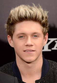 Niall Horan - This Is Us premiere NY
