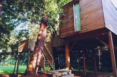 """@tetealler.wanderlust on Instagram: """"Nothing is more beautiful than the loveliness of woods before sunrise ••• #treehouse #cabañitasdelbosque #intothewild #cabininthewoods…"""" Cabin In The Woods, Before Sunrise, Treehouse, Travel Inspiration, Wanderlust, Journal, Plants, Beautiful, Instagram"""