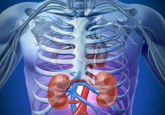 Moje pravdy - Recepty na očistu ledvin