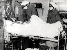 24 Heart Transplant Ideas Heart Transplant Transplant First Heart Transplant