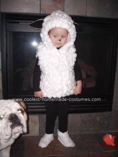 Homemade Lamb / Sheep Costume: Here is what I used to make this costume:  Cotton balls - 350 (2.5 bags - 140 cotton balls in 1 bag) White hooded jacket  1 black felt for ears (white