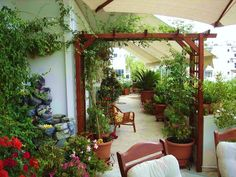 A garden on your balcony, rooftop or urban front yard isn't a new concept, but it is a way for city dwellers to strive for a more natural lifestyle. Little Gardens, Rooftop Garden, Terrace, Natural Lifestyle, Clean House, Balcony, Living Spaces, Pergola, Sweet Home