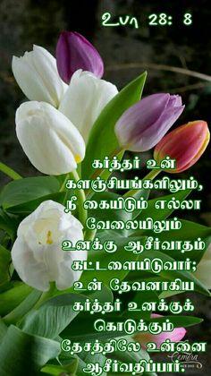 bible vasanam in tamil audio download