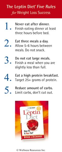 The Five Rules of The Leptin Diet | Health & Wellness News