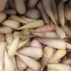 Ramp Bulbs :: Search by flavors, find similar varieties and discover new uses for ingredients @ preppings.com
