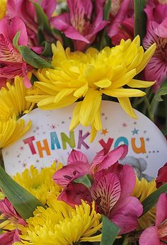 Thanks for following me and for your kindness in sharing your pins!! Have a wonderful day everyone! - Susie ♥ https://www.pinterest.com/susiewoozie23/
