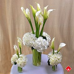White calla lilies and hydrangeas for Montreal party decorations.