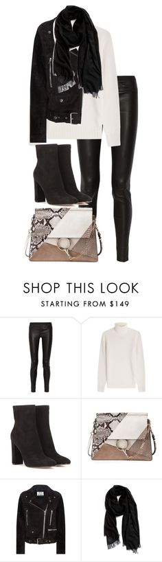 """""""Untitled #2993"""" by elenaday ❤ liked on Polyvore featuring Helmut Lang, Michael Kors, Gianvito Rossi, Chloé, Acne Studios and Nordstrom"""