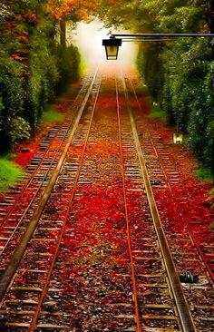 Autumn trains tracks in Pennsylvania • original source not found