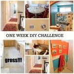 Redouxinteriors.com Dumpster dives, remakes...beautiful stuff. Check out her website for all kinds of awesome! one week home diy challenge redouxinteriors