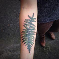 western sword fern by Alena Chun in Portland, Oregon. Icon Tattoo Studio.