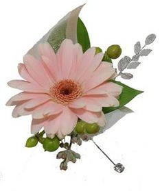 Image result for daisy corsages and boutonniere