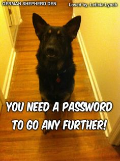 show me your passport #gsd
