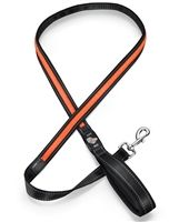 This Orange LED Dog Leash is both affordable and adorable! Check it out!