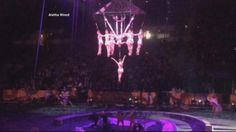 Failed Clamp Causes Serious Injury in Circus Accident -  #News