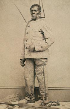 Breeding of american slaves true stories of american slave breeding