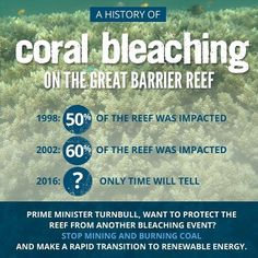 It is so sad to the Great Barrier Reef being impacted and it is sad there are people who believe in taking care of the environment or renewable energy #greatbarrierreef #globalwarming #climatechange #environment #renewableenergy #infowars #davidicke #alexjones #oliverstone #conspiracy #sheeple #putin #vladimirputin #news #fact #globalawakening #ronpaul #crimea  #conspiracyrealist #rtnews  #randpaul #freeukraine #ukraine #ussr #serbia #Palestine by jessejames1567 http://ift.tt/1UokkV2