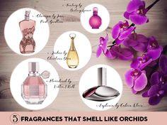 http://abellasbeauty.blogspot.com/2016/06/5-fragrances-that-smell-like-orchids.html