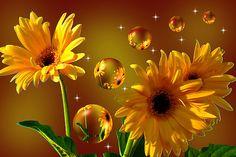 angi baker sunflower art....gorgeous!!!!!!