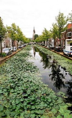 South Holland, Holland Netherlands, Luxembourg, Delft, Amsterdam, Beautiful Places, Tours, Holland, Netherlands
